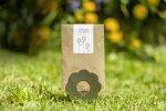 Vorschau: Sonnenblumen Samen Sonnengruß